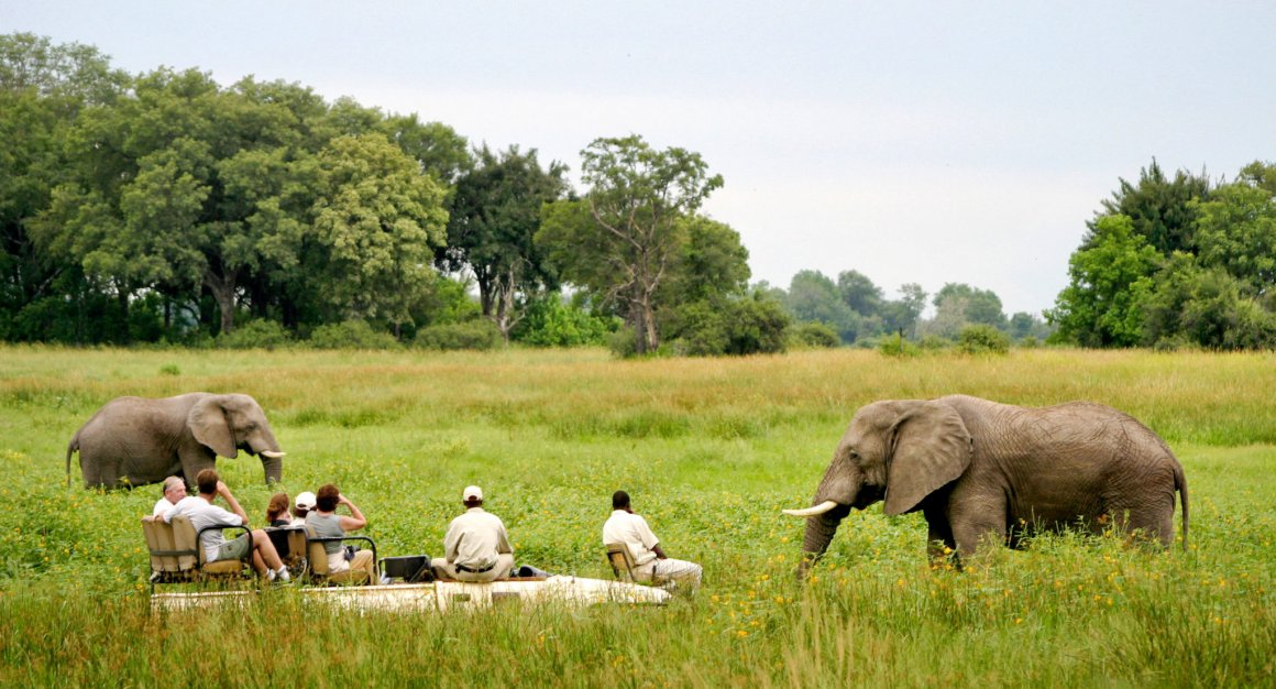 Moremi Game Reserve (Botswana)