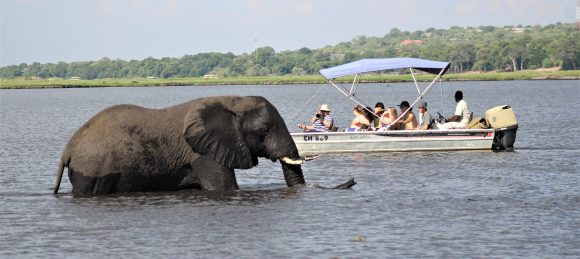 Botswana (Chobe National Park)
