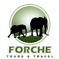 Forche Tours and Travel