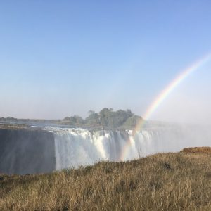 Best of Victoria Falls Experience